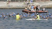 vista previa del artículo 50º edición de la travesía a nado del puerto