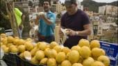 vista previa del artículo Los limones de Málaga serán promocionados por ASAJA para su consumo en el mercado internacional