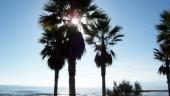 vista previa del artículo Nueve playas de Málaga con la Q de calidad