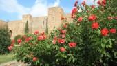 vista previa del artículo Descubrir la Alcazaba de Málaga