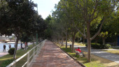 vista previa del artículo Propuestas culturales para conocer Málaga